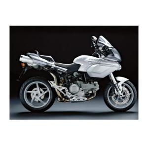 杜卡迪 Multistrada 1000 DS
